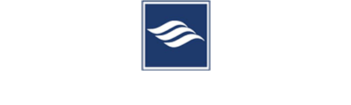 Synergy Appliance Logo